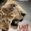 Omaha Film Festival: The Last Lions