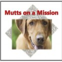 Mutts on a Mission Dog Walk