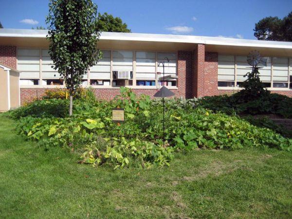 Squash and pumpkins at Western Hills Magnet Center