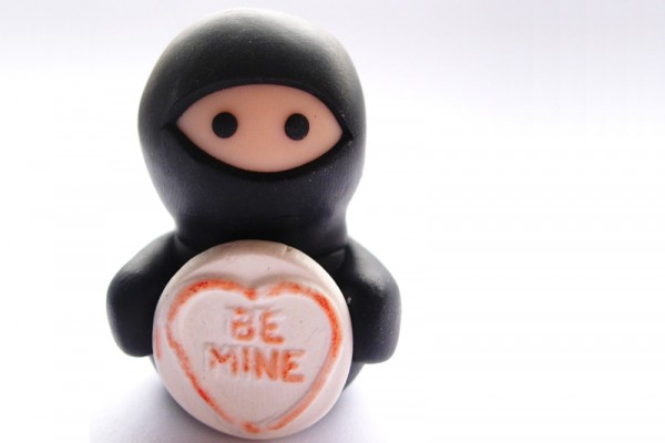 Valentine's Day Ninja by Lilley on Etsy.com