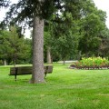 Hanscom Park Floral Displays