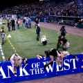 The Nighthawks Cheerleader Zombies clearly endorse Bank of the West