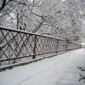 Winter in Elmwood Park