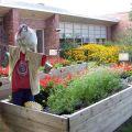 Flower garden at Western Hills Magnet Center