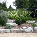 Rock Garden in Elmwood Park