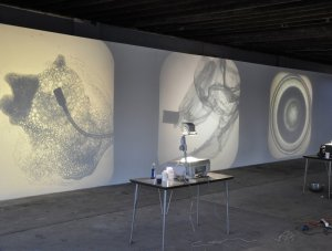 Angeles Cossio: Seeing What Happens (2010): live performance with overhead projects, aerators, fans, water and soap, dimensions variable