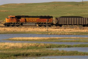 BNSF coal trains frequently go past a wetland meadow where black-necked stilts nest in Sheridan: photo by NEBRASKAland Magazine/Nebraska Game and Parks Commission.