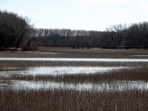 Nebraska Wetlands