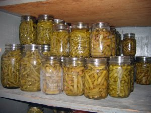 Pressure canned green beans